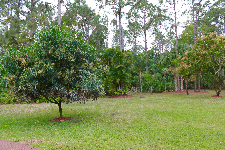 15797 116 Terrace  - Abacoa Homes - photo 7