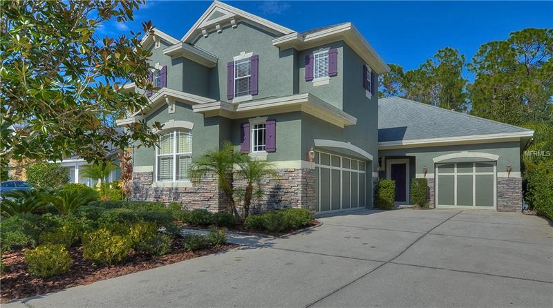 11917 Meridian Point Dr TAMPA  33626