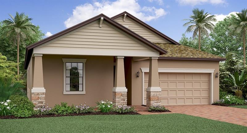 13338 Wildflower Meadow Dr RIVERVIEW  33579